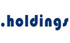 .holdings域名